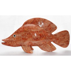 Pesce in Madrepora